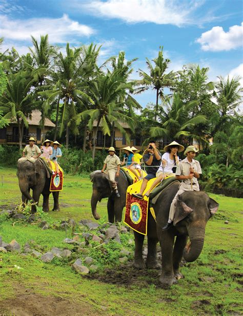 Elephant Back Safari Package   Bali Safari Park