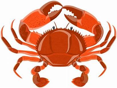 Crab Clipart Underwater Transparent Yopriceville Var