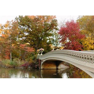 Photo Essays: The Bow Bridge in Autumn - York Avenue