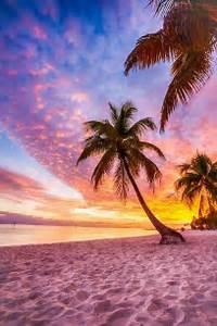 Beautiful Beach Sunset With Palm Trees   www.pixshark.com ...