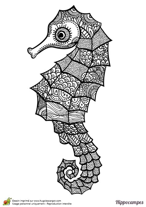 anais cuisine dessin à colorier d un hippoce mandala hugolescargot com