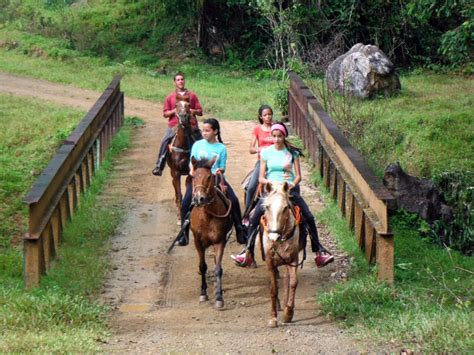puerto rico horseback riding juan san excursions cruise