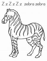 Zebra Coloring Pages Printable Sheets Colouring Animal Clipart Twistynoodle Printables Preschool Noodle Popular sketch template