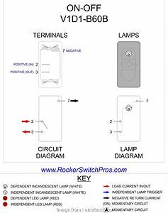 110v Toggle Switch Wiring Professional On  Switch Wiring