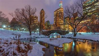 York Usa Central Park Snow Nyc Trees