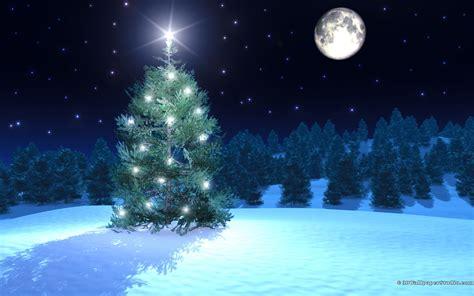 Christmas Tree Wallpapers 1680x1050