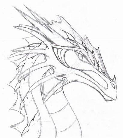 Dragon Realistic Drawings Drawing Head Dragons Google