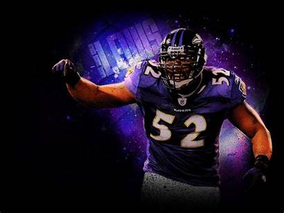 Nfl Football Cool Wallpapers Ravens Baltimore Player
