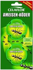 Ameisen Im Rasen Wirksam Bekämpfen : ameisen im rasen oder garten entdeckt ameisen im rasen ~ Whattoseeinmadrid.com Haus und Dekorationen