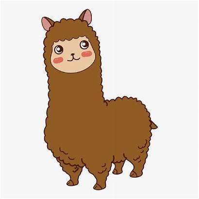 Alpaca Fondo Sin Imagenes Llaman Clipart Como
