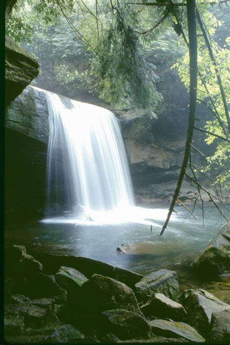 Cave run lake is widely known. Daniel Boone National Forest - Special Places | Daniel ...
