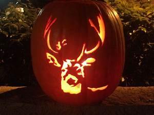 11, Creative, Pumpkins, Carved, To, Look, Like, Wildlife