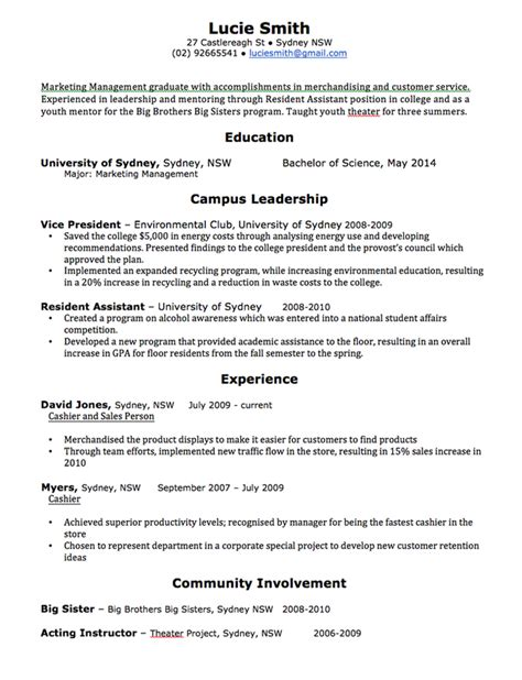 cv template free professional resume templates word