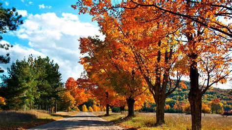 Autumn Wallpapers For Mac by 1920x1080 Autumn Road Desktop Pc And Mac Wallpaper
