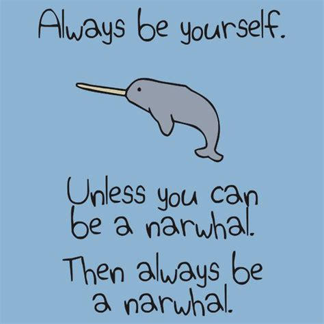 Narwhal Meme - best 25 narwhals ideas on pinterest cute narwhal cute unicorn and kawaii narwhal