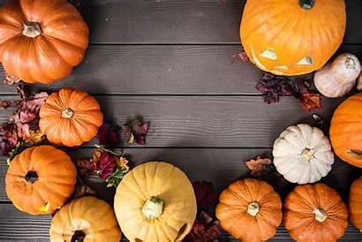 Pumpkin Desktop Wallpapers Background Definition