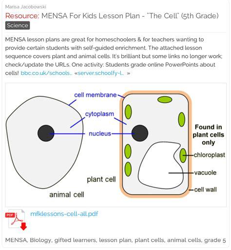 mensa  kids lesson plan  cell  grade mensa