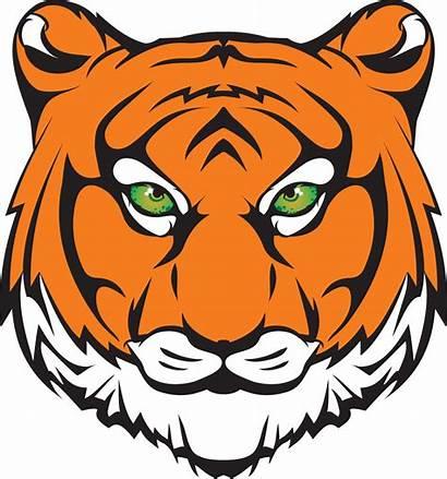 Tiger Princeton Mascot Tigers Clipart Head Transparent