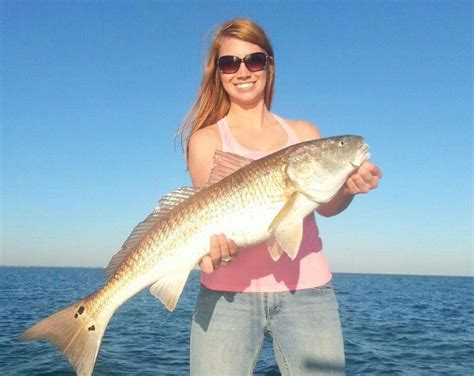 fishing george report alligator point island june carrabelle vicky wiegand