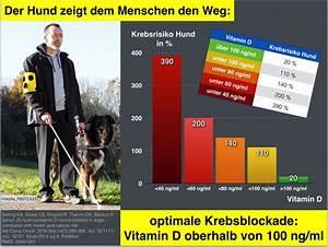 Vitamin D Spiegel Berechnen : re sonnenlicht und vitamin d f r wohlige lebendigkeit 6 ~ Themetempest.com Abrechnung