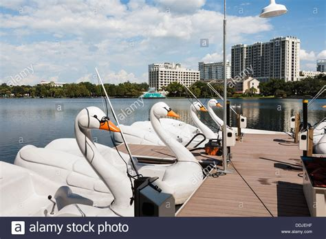 Paddle Boats Orlando Florida by Swan Paddle Boat Stock Photos Swan Paddle Boat Stock