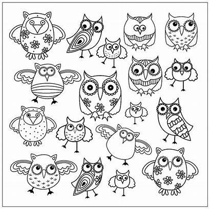Colorare Coloring Animali Disegni Gufi Owls Adulti