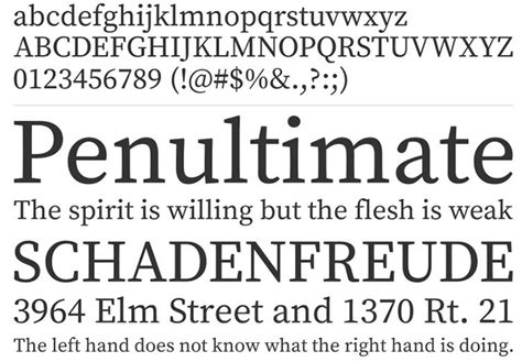 image gallery typeface exles