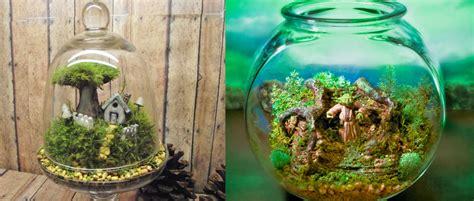 poubelle cuisine comment créer mini terrarium
