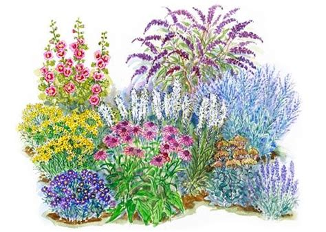 all season garden plan pin by alicia andy todd on landscaping curb appeal flowers pi