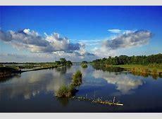 Bangdelash Jayybri7's Weblog