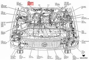 Where Is The Ecm  Pcm Located On A Ford 5 0l Efi Engine  Diagram Would Be Helpful
