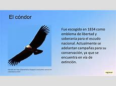 Colombia ppt video online descargar