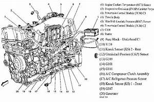 Diagram  Miller Trailblazer Engine Diagram Full Version