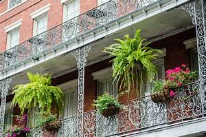 farn auf dem balkon halten geht das With französischer balkon mit pflanzen für vertikale gärten
