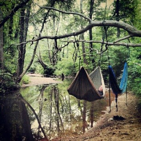 Hammock In The Trees by Is Better In Hammocks Back To Nature