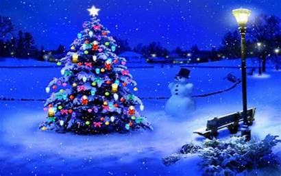 Christmas Lights 4k Tree Wallpapers Merry Computer