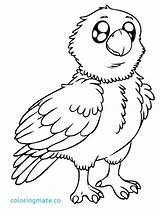 Coloring Eagles Eagle Bald Printable Pottery Adult Nest Drawings Getcolorings Winter Philadelphia Sheets July Super Babies Heart Printables Cartoon Animal sketch template