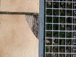 Vinylboden Kleben Auf Estrich : eine fliese vermutlich aus keramik mit estrich au en dauerfeucht kleben balkon ~ Orissabook.com Haus und Dekorationen