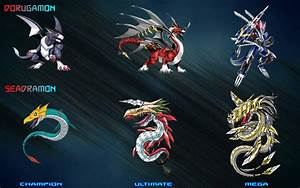 Digimon Evolution Chart 4 by XSamuraiEdgeX on DeviantArt