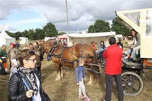 La Parenthèse Rennes : faire du cheval rennes ~ Farleysfitness.com Idées de Décoration