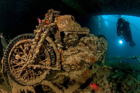 scuba diving  egypt red sea dive  world vacations