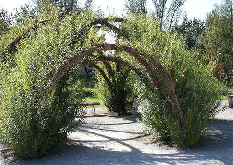 Garten Kaufen Villingen by Weidenkuppel Weidenlaube Weidentipi Als Schattenspender