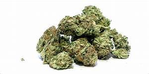 cannabis weed names