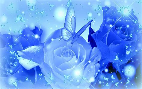 Blue Roses as Background Wallpaper