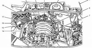 Audi A8 Engine Diagram