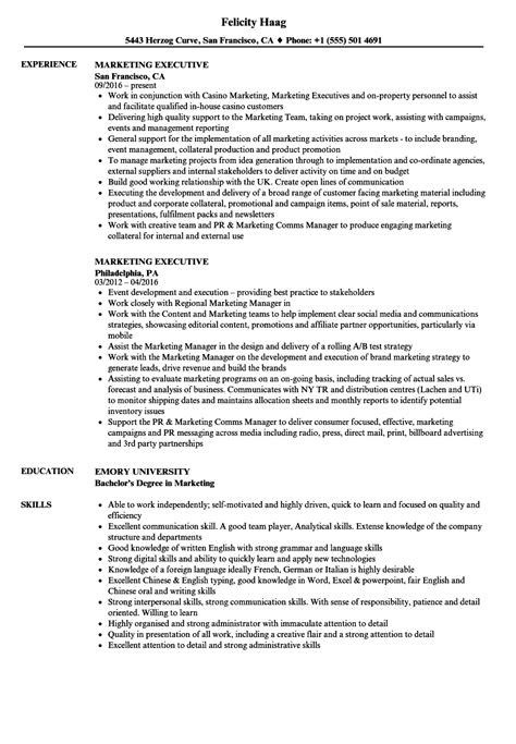 resume for marketing executive with experience marketing executive resume sles velvet