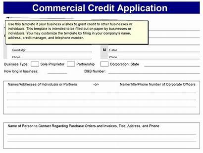 Application Credit Form Template Forms Templates Card
