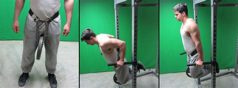 Assisted Weight Bench by 20 Dip Variations 4 Assisted Dips Amp 16 Advanced Dip