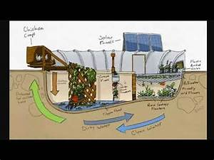 Turning A Swimming Pool Into A Garden Garden Pool