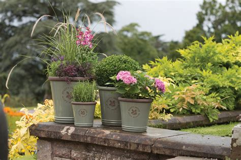 How To Care For Container Gardens In Cold Weather The